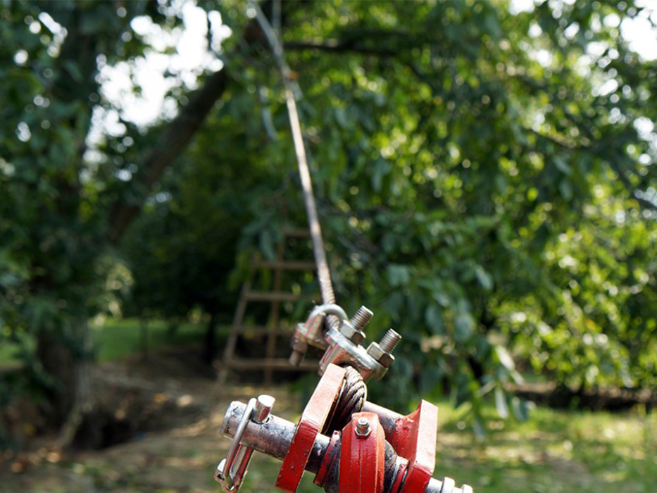 Vibrope Tree Shaker (rope Shaker)   Kadıoğlu